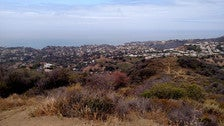 View from atop Temescal Canyon